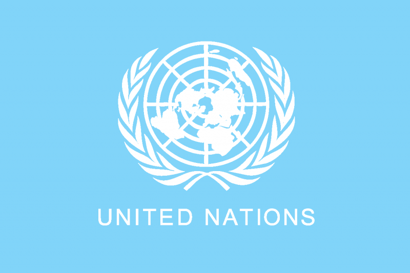 icoon United Nations